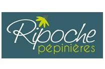 DECOJARDIN Ripoche Logo